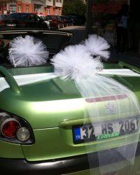 Araba Süsleme 38