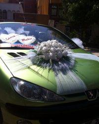 Araba Süsleme 1